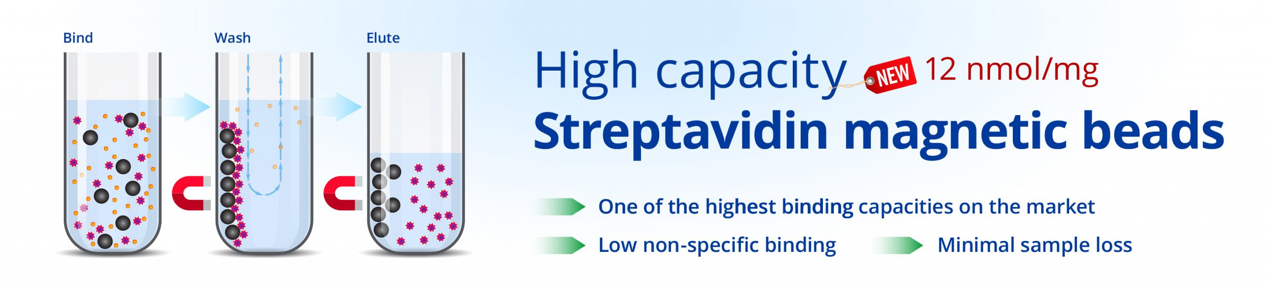 High capacity Streptavidin Magnetic Beads